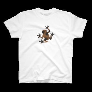 ツバメ堂の茶色いカエル T-shirts