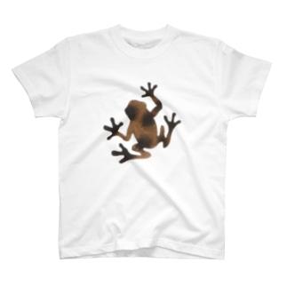 茶色いカエル Tシャツ