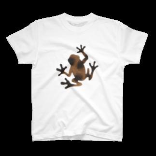 ツバメ堂の茶色いカエル Tシャツ