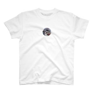 きらきら☆ T-shirts