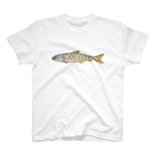 アマゴ T-shirts