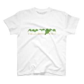 めじろ押し T-shirts