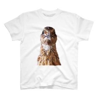 ガン見ウズラ T-shirts