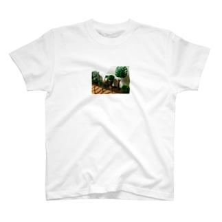 アジアンTシャツ T-shirts