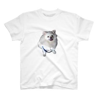 みる T-shirts