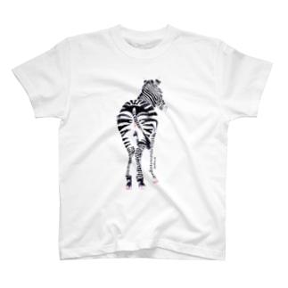 SHIMAUMA T-shirts