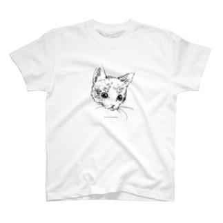 a cat. T-shirts