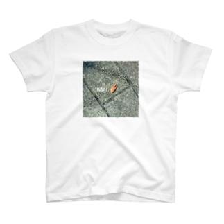 KANI T-shirts