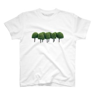 木 T-shirts