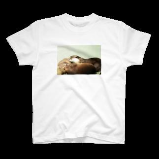 Kengo Kitajimaのカワウソ T-shirts
