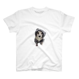 愛犬えいるちゃん T-shirts
