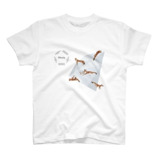kouwaki model T-shirts