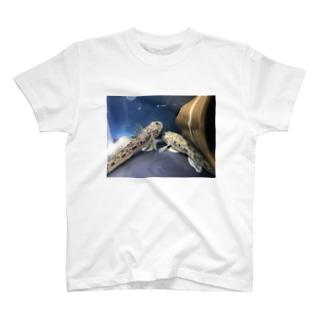 ハゼ T-shirts