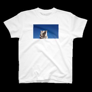 豆柴ビーンのお店の豆柴ビーンと青空 T-shirts