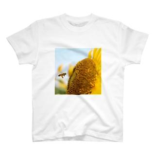 夏っぽいハチ T-shirts