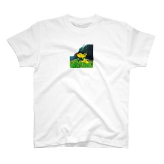 ポピー T-shirts
