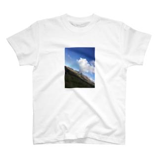 しゅん T-shirts