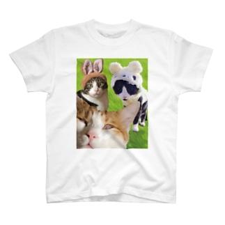 家族写真2 T-shirts