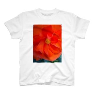 太陽の様に T-shirts