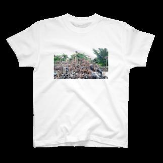 ゆるかふぇおんらいんの多肉の写真 T-shirts