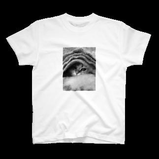 mikimimi629のちょこっとしか見えてない T-shirts