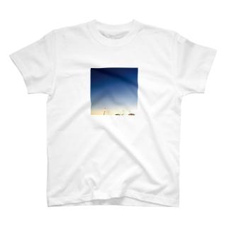 nigth. T-shirts