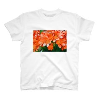 orange  flower T-shirts
