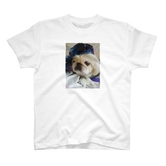 JUN君応援グッズ T-shirts