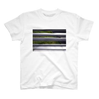 a bug?T T-shirts
