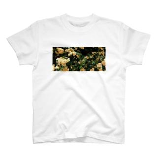 通学路に咲いてた花 T-shirts
