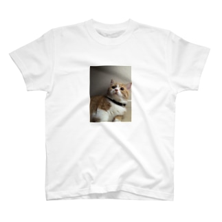 らら T-shirts
