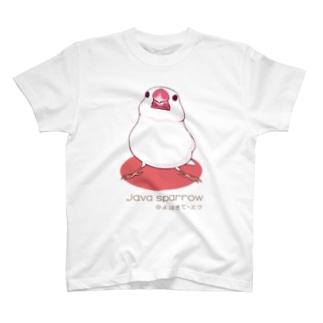 よはきて白文鳥 T-shirts