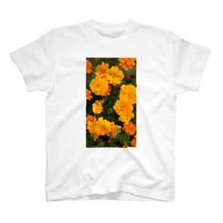 イエローオレンジ T-shirts