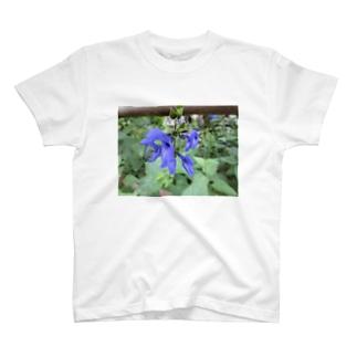 秋の青空の様に T-shirts