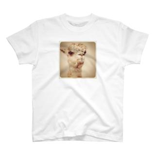 イケメンアルパカ T-shirts