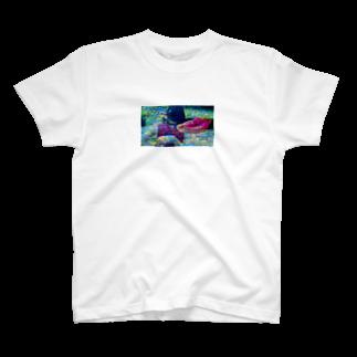 317_mのしゃしん T-shirts