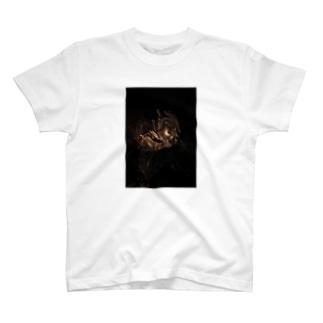 それはさすがにえらすぎ神仏 T-shirts