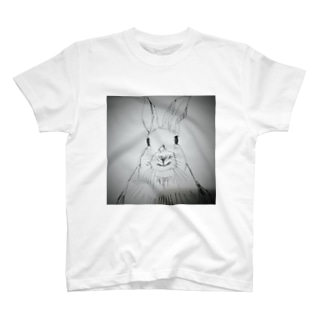 Peter rabbit T-shirts