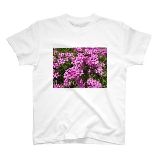 野の花の可憐さ・・・ T-shirts