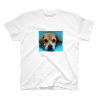 タローちゃん T-shirts