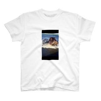 野生の玉袋 T-shirts
