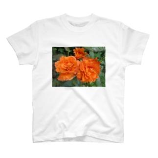 ローズNo.5 T-shirts