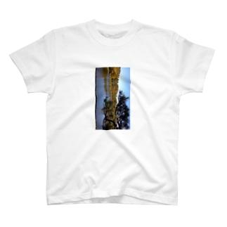 松と池 T-shirts