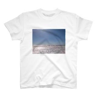 さざ波シリーズ T-shirts