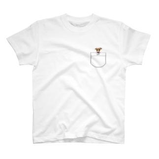 上からひょっこりイタグレちゃん レッド T-shirts