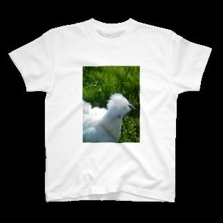 TOMOKAZUの烏骨鶏 T-shirts