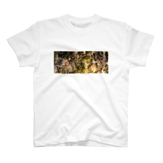 B_M_B  FOREST CAMOUFLAGE T-shirts