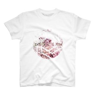 にゃーん変換器 T-shirts