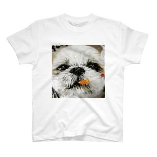 13歳のチビじぃちゃん…チビ公くん T-shirts