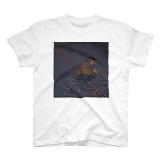 る T-shirts